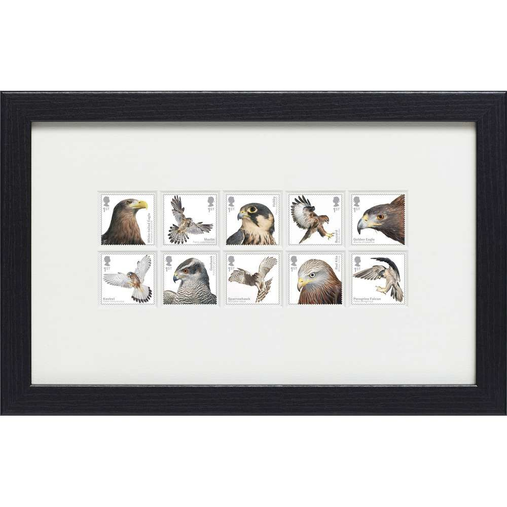 The Birds of Prey Framed Stamp Set - N3162