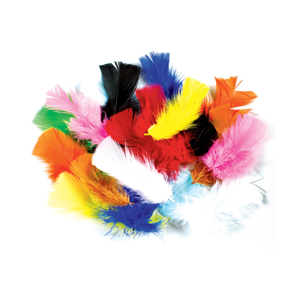Rainbow Feathers Class Pack 28g Assorted D259990