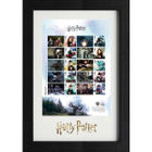 The Harry Potter Framed Generic Sheet - N3154