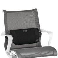 View more details about Fellowes Plushtouch Back Support - 8026501