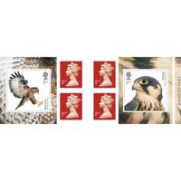 1st Class Stamps x 6 Pack - (Postage Stamp Book) - Birds of Prey