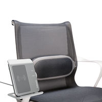 View more details about Fellowes I-Spire Black and Grey Lumbar Support Cushion - 9311602