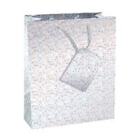 Holographic Medium Gift Bags <TAG>TOPSELLER</TAG>