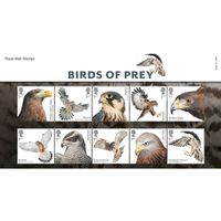 The Birds of Prey Presentation Pack - AP458
