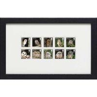 The Owls Framed Stamps - N3130