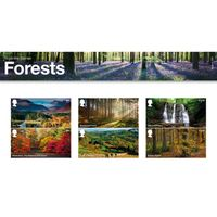 The Forests Presentation Pack
