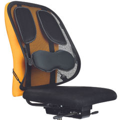 View more details about Fellowes Professional Series Mesh Back Support Black 8029901