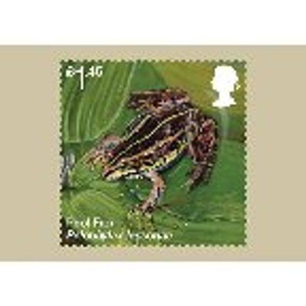 Reintroduced Species Stamp Cards - AQ261