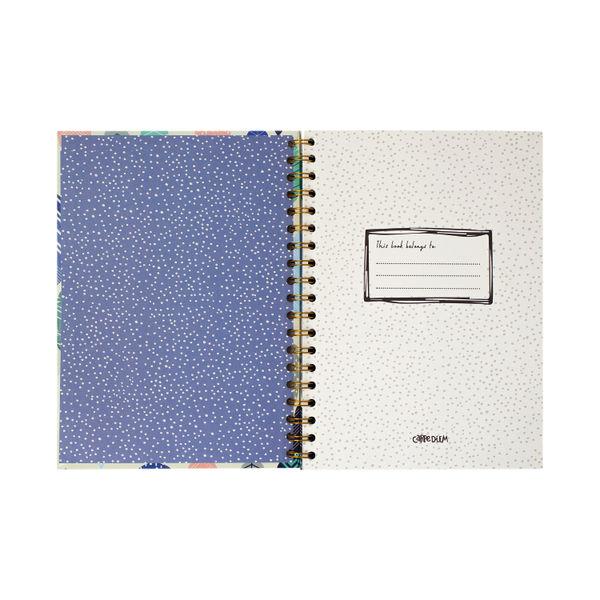 Pukka Feathers Hardback Notebook B5 Blue (Pack of 3) 9379-CD