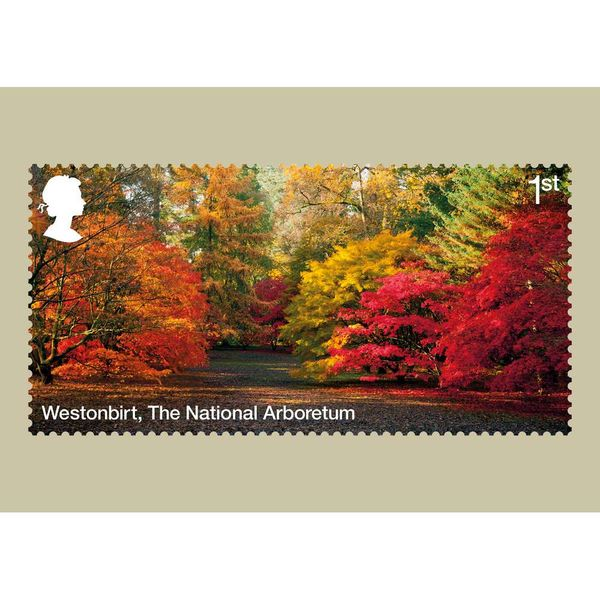 The Forests Stamp Card Pack