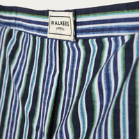 Blue and Green Stripes Miller Swimsuit | Bombinate