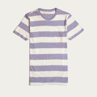 Stonewash Blue Bold Stripe T-Shirt | Bombinate