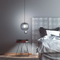 Smoked Glass Bale Pendant Lamp  | Bombinate