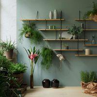 Oak / Black LINK Set TRIO Shelf  | Bombinate