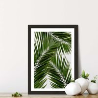 Palm Leaf III Art Print Black Frame | Bombinate