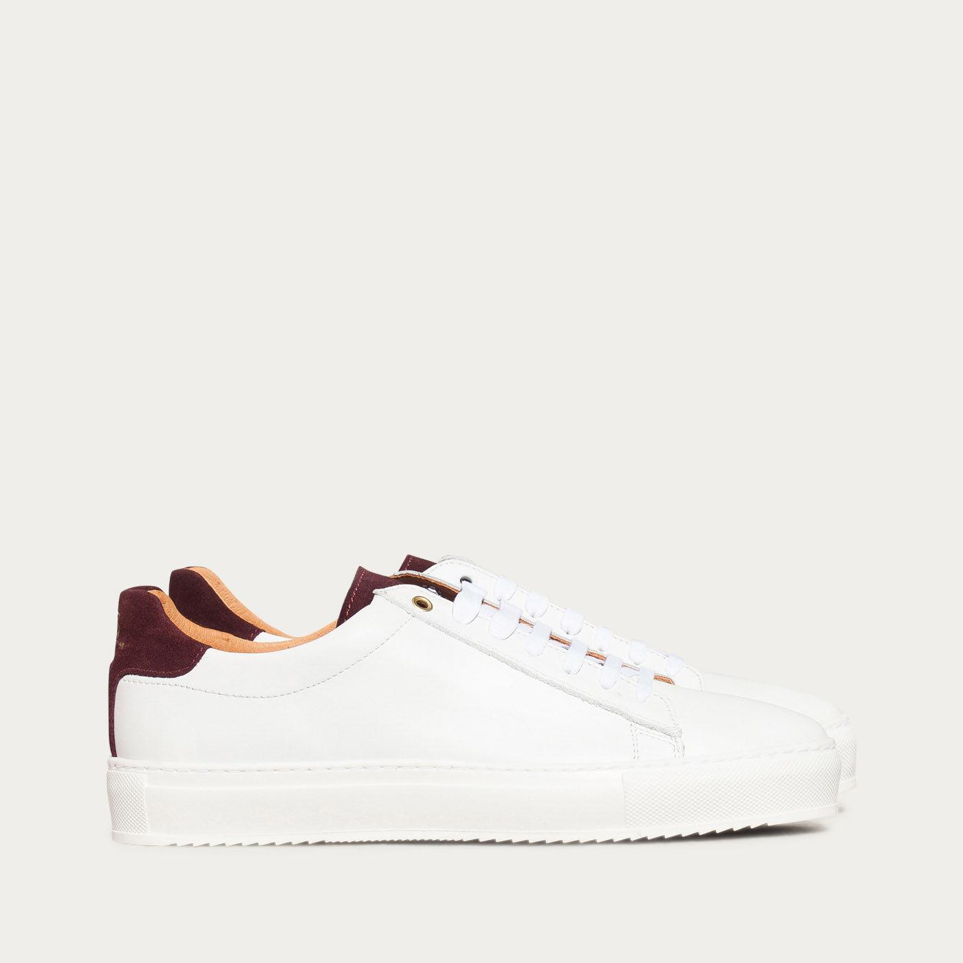 Burgundy Calf Taranta Sneakers  | Bombinate