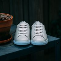 Lamb Low Sneakers 5