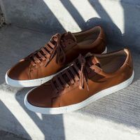 Lion Low Sneakers | Bombinate