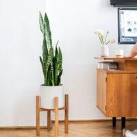 Mid-Century Plant Stand | Bombinate