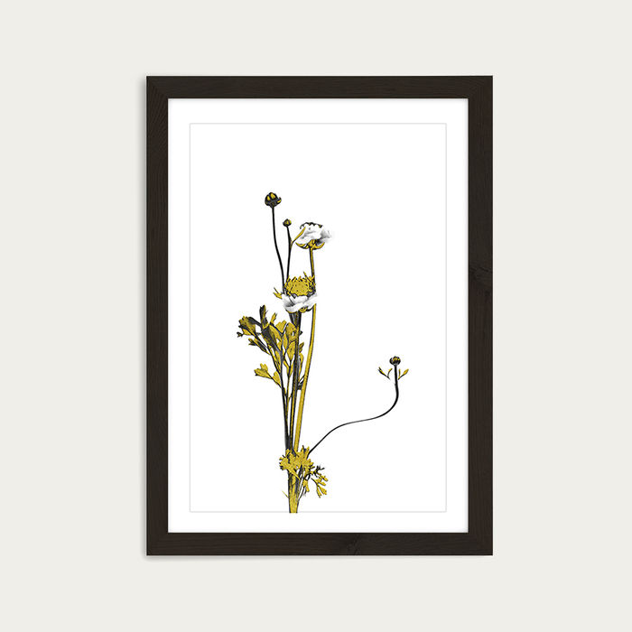 Flower Minimal Black and Gold 8 Art Print Black Frame | Bombinate
