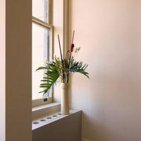 Phallic Vase V86 | Bombinate