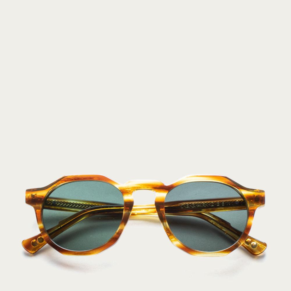 Havana Pinto Sunglasses | Bombinate