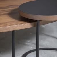 Walnut Treasure Coffee Table | Bombinate