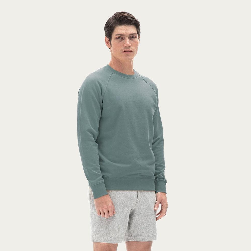 Grey Fenix Sweatshirt    Bombinate