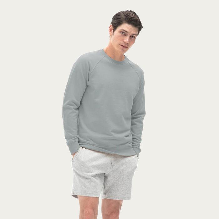 Light Grey Fenix Sweatshirt    Bombinate