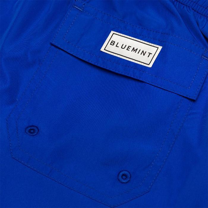 Dazzling Blue Logan Swim Short  | Bombinate