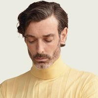 Citron Knitted Polo Neck  | Bombinate