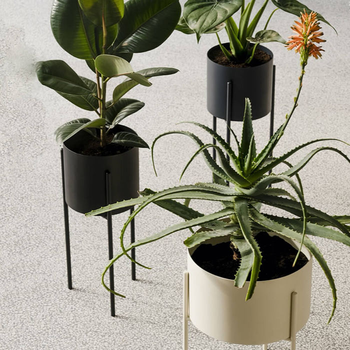 Black Maki Plant Pot Tall | Bombinate
