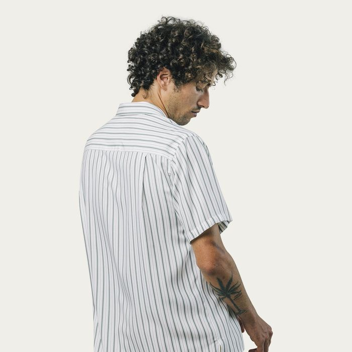 Kale Stripe Shirt | Bombinate