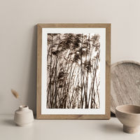 Grasses In The Golden Sunset Art Print Oak Frame | Bombinate