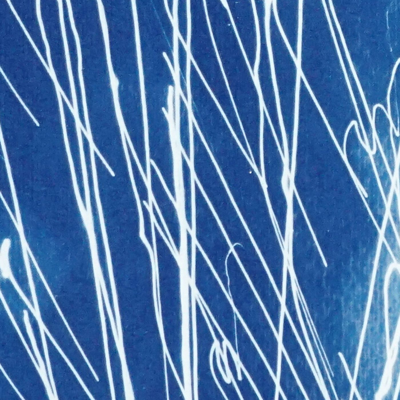 Firework Lights Handmade Cyanotype Art Print   Bombinate