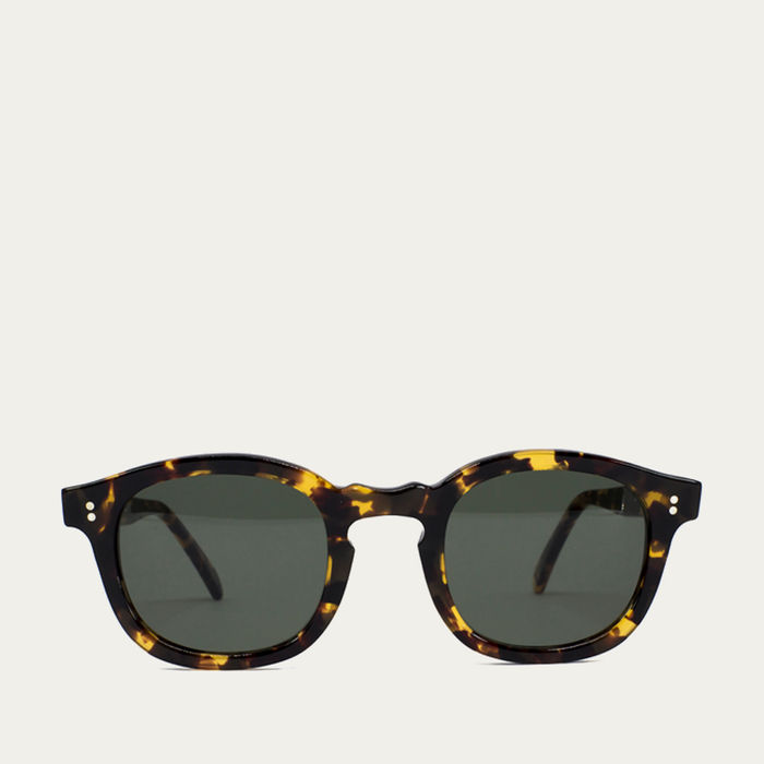 Brown Tortoise Dumile Sunglasses | Bombinate
