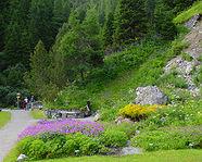 Alpinum Schatzalp