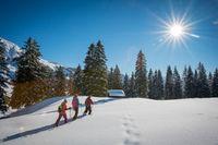 Schnupperkurse Schneeschuhwandern
