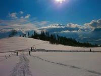 Schneeschuhwanderung in Schwanden mit Raclette-Plausch.