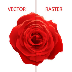 Vector vs Raster Imaging on Picture of a Flower