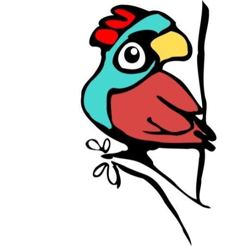 Love Birds Story