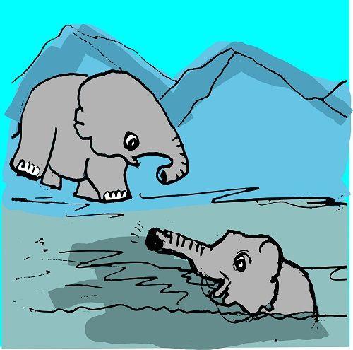 Elephant Bath Cartoon