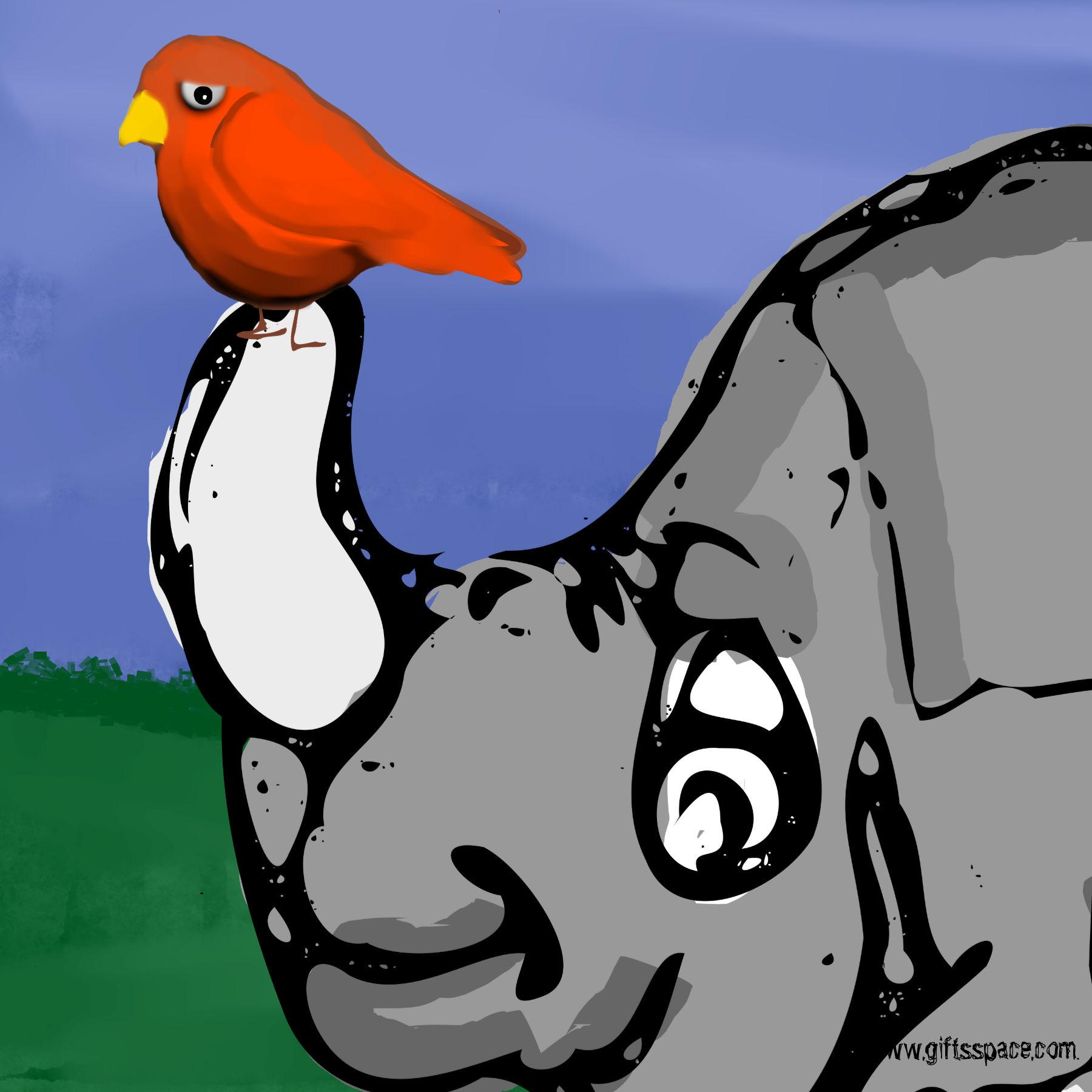 Rhino And The Bird