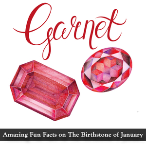Amazing Fun Facts on the birthstone of January