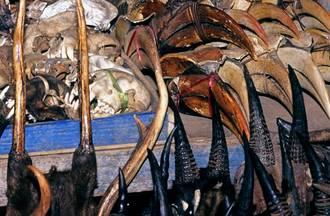 Corruption as an Enabler of Wildlife Trafficking