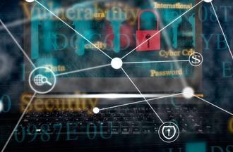 Tackling Cyber Fraud