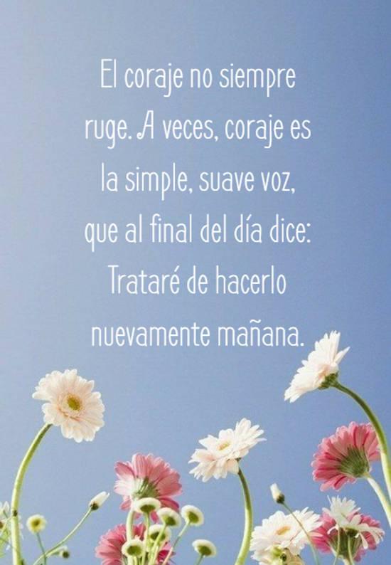 El coraje no siempre ruge. A veces, coraje es la simple, suave voz, que al final del día dice: Trataré de hacerlo nuevamente mañana.