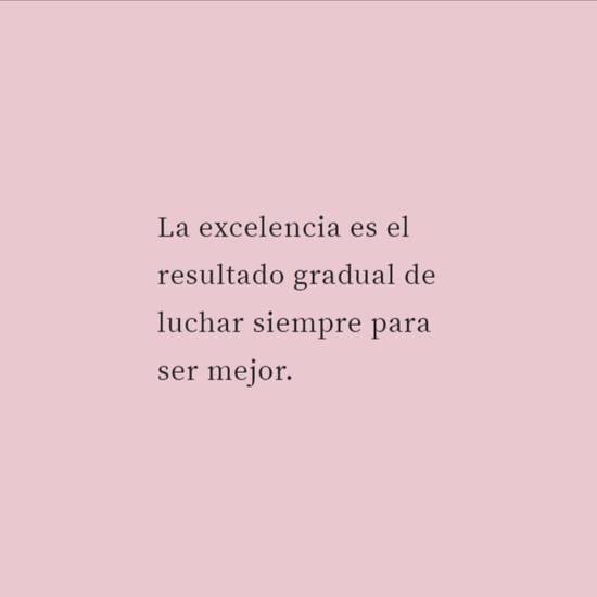 La excelencia es el resultado gradual de luchar siempre para ser mejor.