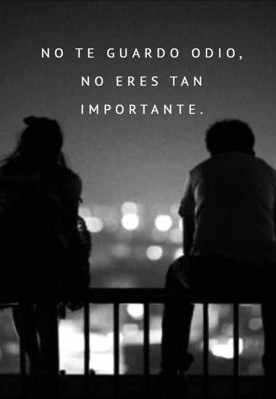 No te guardo odio, no eres tan importante.