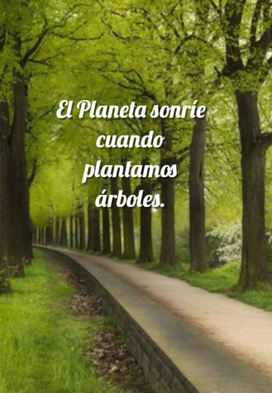El Planeta sonríe cuando plantamos árboles.